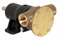 "¾"" bronze pump, <b>40-size</b>, foot-mounted with BSP threaded ports"