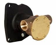 "¾"" bronze pump, 40-size, flange-mounted with BSP threaded ports"