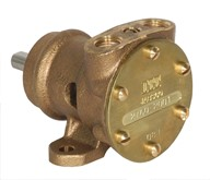 "1/4"" bronze pump, <b>10-size</b>, foot-mounted with BSP threaded ports"