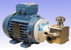 "1"" P80 'Pureflo' Hygienic Self-Priming Flexible Impeller Motor Pump Unit"