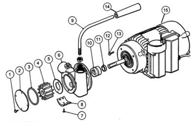 Starter Solenoid Wiring Diagram For Atv further Taotao 110cc Carburetor additionally Polaris 50 Parts Diagram further Smc Atv Wiring Diagram together with 150 Scooter Body Parts. on 90cc atv wiring diagram